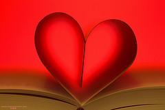 amor dialéctico