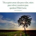 Imgen con frase de amor Dalai Lama