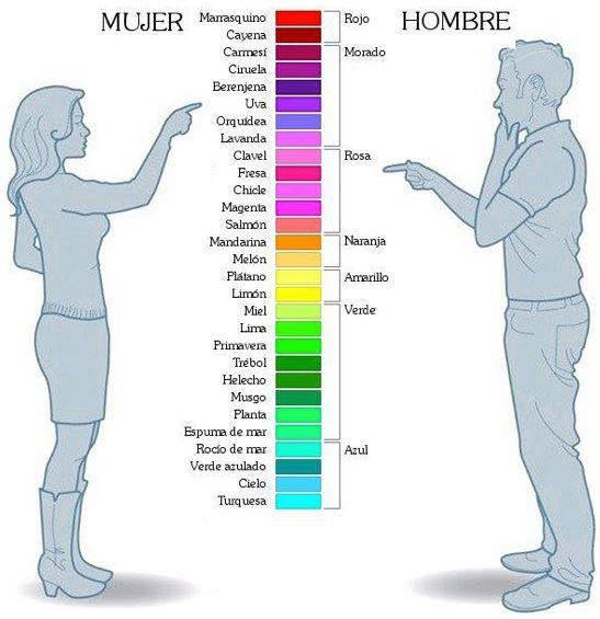 infografía colores según el sexo