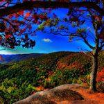 Wallpaper paisaje romántico otoñal