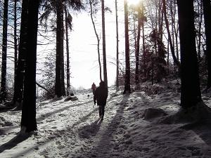 Camino de nieve con personas