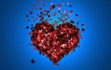 10 datos curioso del amor