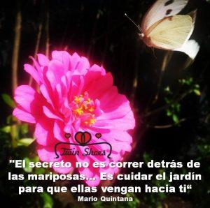 El secreto no es correr detrás de las mariposas…Es cuidar el jardín para que ellas vengan a ti.