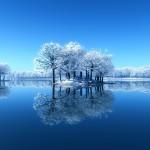 Wallpaper invierno