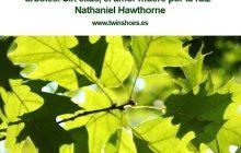 Las caricias son tan necesarias para la vida de los sentimientos como las hojas para los árboles. Sin ellas, el amor muere por la raíz Nathaniel Hawthorne.