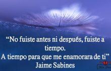 """""""No fuiste antes ni después, fuiste a tiempo. A tiempo para que me enamorara de ti"""" Jaime Sabines."""