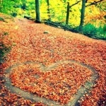 Fondo de pantalla para iphone corazón de hojas