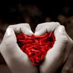 Fondo de Pantalla Corazón de pétalos