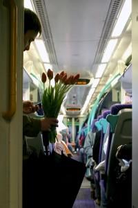 tren y flores