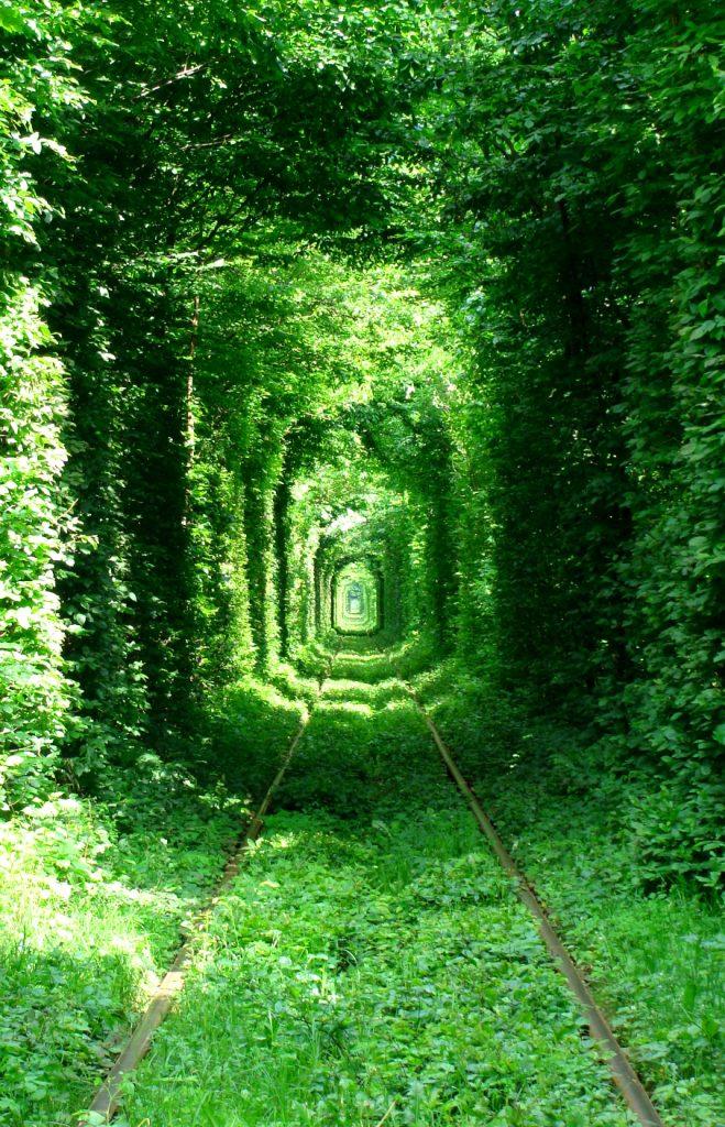 tunel-del-amor-foto
